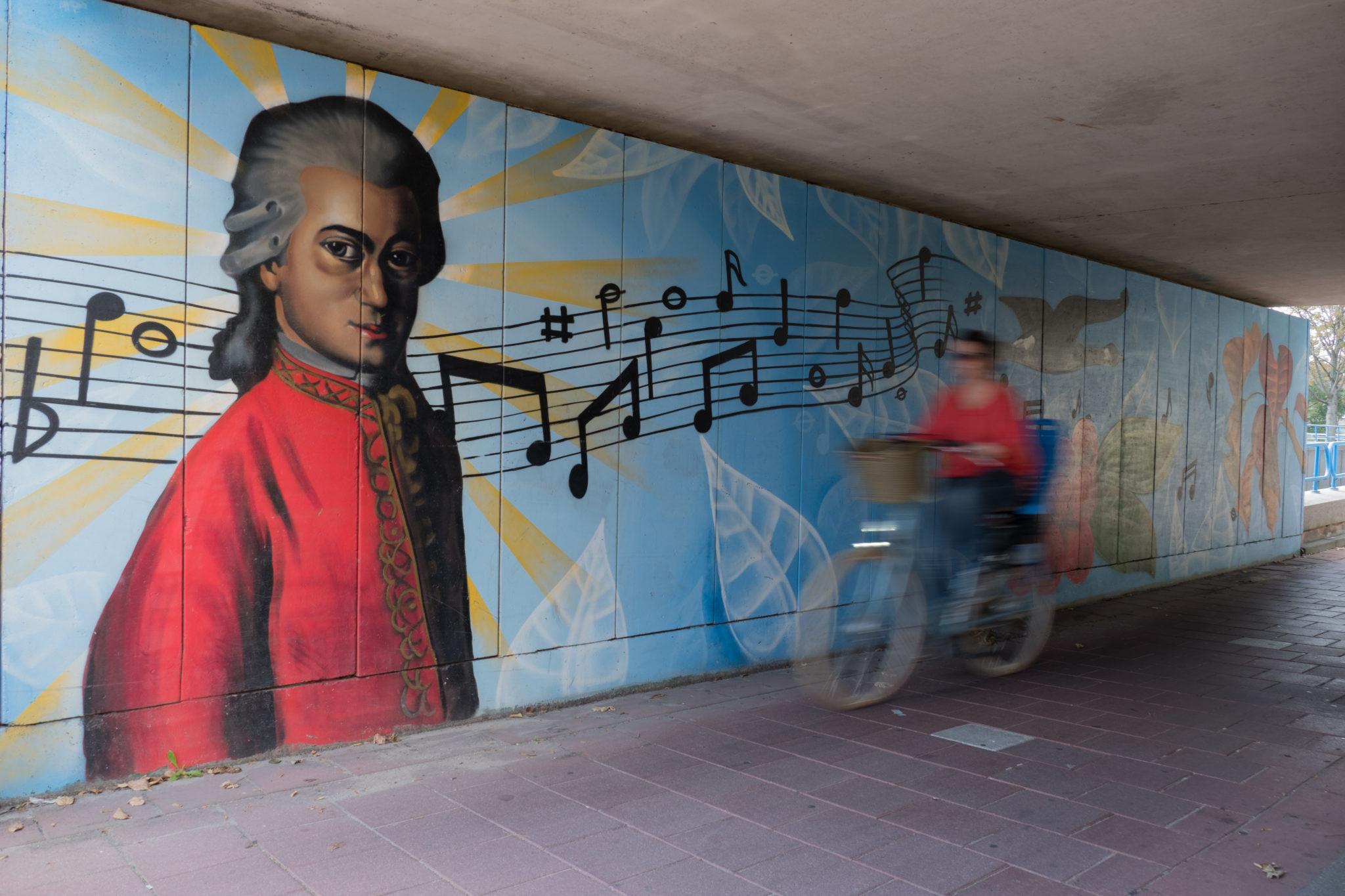 Tunnel met graffiti kunst in Waddinxveen