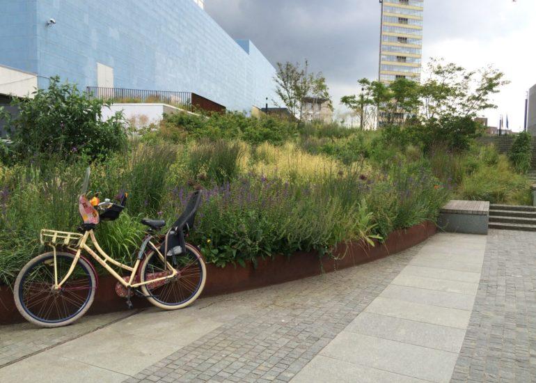 Den Haag Europolgebied fiets tegen plantenborder